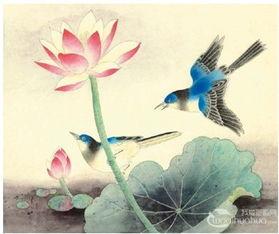工笔画入门脊苓鸟的画法 2