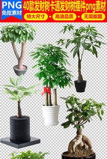 收藏 -绿色园艺图片素材 绿色园艺图片素材下载 绿色园艺背景素材 绿...