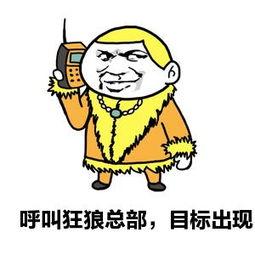 呼叫狂狼总部,目标出现-表情 QQ表情大全 最新QQ搞笑图片大全 九蛙...