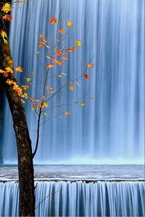 ...领略神奇大千世界.-最佳光线 最美角度 如梦如幻的视觉大片
