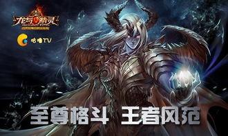 龙与精灵 至尊格斗王者风范 战斗视频新鲜出炉 论坛广场论坛游戏新闻