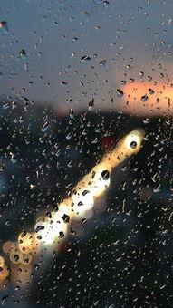 ...的雨中朦胧美景手机QQ聊天背景图 雨中忧伤景色QQ皮肤图