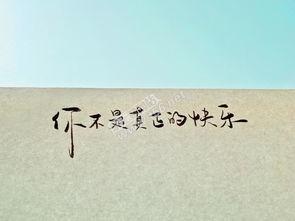 描写风的名句-诗句 句子 泰州 代写