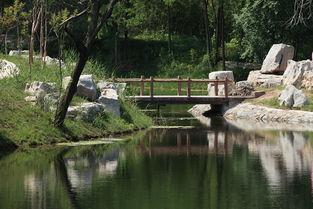 青云湖之夏