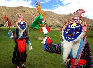 素可泰圆叶立枝山乌龟-中国日报7月14日电(   )2017年7月14日,记者来到西藏日喀则南木...