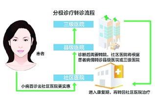 ...转诊流程(资料图片)-贵州7市州试点分级诊疗 三级医院主治急危重症