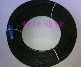 皮线光缆 芯数型号齐全