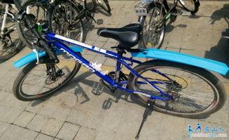 如何选购电动自行车?电动自行车什么牌子好?