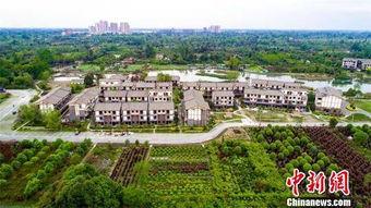 温江万春幸福田园,老百姓居住的院落