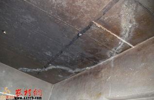 ...房现多处裂缝 屋顶钢筋外露裂缝被处理