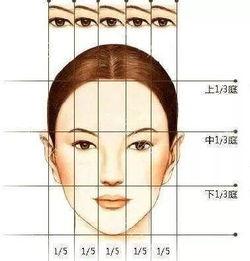 看的眼角要大致符合以下数据,... (1)两眼内眦间距男性约33.6mm,...