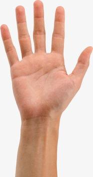 手势图片手势图片手臂手掌手势集锦耶棒拉勾双手合手式集合-手势图...