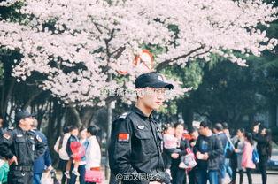 ...(图/@疼痛有益摔倒再爬起 )-网曝武大樱花节最帅校保现身 被网友...