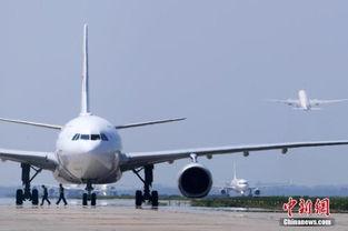 怎么样快速查询航班动态信息?