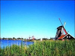 荷兰美丽的田园风光