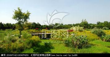 温江幸福田园,城镇风貌,建筑摄影,摄影,汇图网