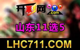 香港六合彩双 精准六 6合开奖公开结果