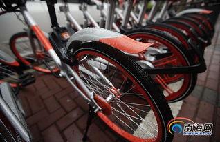 新款摩拜单车来海口啦 车身变轻还有筐骑行更方便
