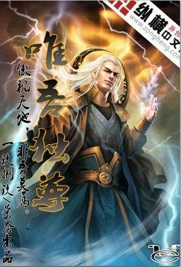 ...尊仙皇 武神 武极天下 -求一本玄幻的小说,最好完结,像斗破苍穹这...