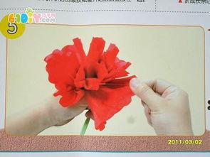 奠基大红花的做法