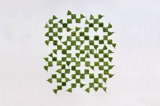 创意几何图形水果系列摄影作品图赏