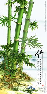 水彩竹子画图片