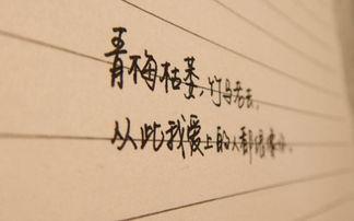 唯美的句子说说心情短语 唯美的句子短的个性签名古风励志