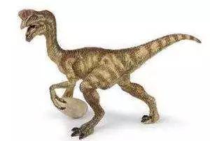 牙齿基本相同,恐龙蛋是在母体中形成,因此形成时的温度会更接近体...