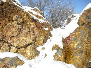 山林的雪黑白分明   其实我最爱雪后初晴.天亮了,雪停了,风儿不刮...