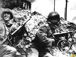 兵临城下 斯大林格勒战役