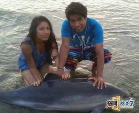 海豚在海滩上搁浅少年的做法太不道德了