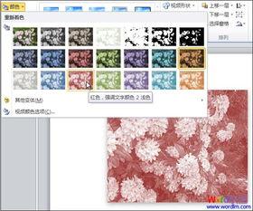 """实例:PPT中""""图片重新着色""""的应用"""