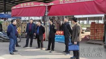 ...领导调研金阳城水果市场食品安全