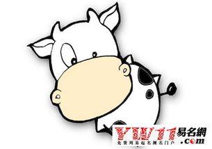 ...997年属牛是什么命