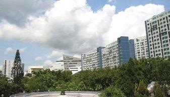 香港城市大学院校风光 四