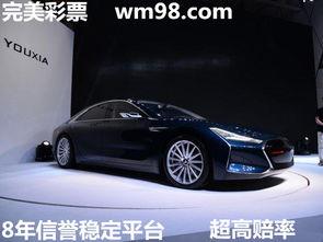 北京赛车国内最早的互联网车企,欲成特斯拉