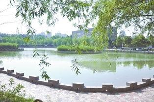 郑州师范学院 生命科学系 在哪个校区,具体郑州哪个位置 谢谢