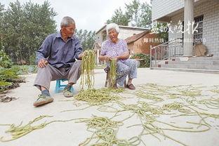 ...城滨海100岁老人 对吃特别不讲究