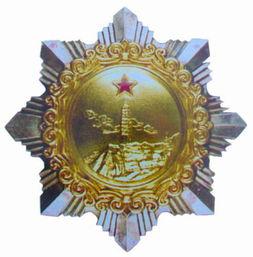 解放军二级独立自由勋章-什么是 独立自由勋章 观察者网