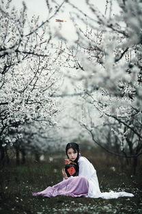 【 杏花酒 】_人像摄影论坛_太平洋电脑网产品论坛