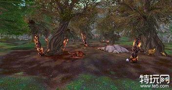 活动,蛮藤谷和蛮荒树林中珍奇强... 半狩猎的热闹冒险队最终阴差阳错...