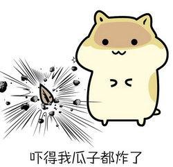 表情 小仓鼠掉瓜子QQ图片 图片大全 表情
