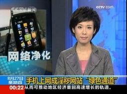 央视曝光手机WAP网站成为色情网站绿色通道
