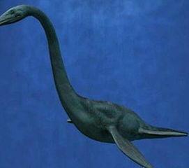 ...斯湖水怪真相 最后一只恐龙