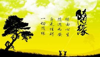 相信命运的安排的说说 命运的句子说说心情 相信命运的安排的句子