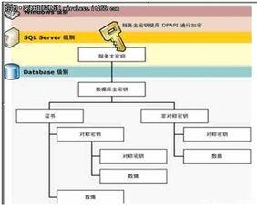 ...只需要使用T-SQL语句就可以实现,下面看一下数据库加密体系结...