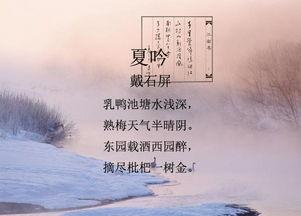 《小池》古诗翻译 古诗背诵 趣图背古诗