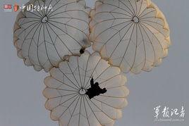 雨伞花-绽放的伞花 三