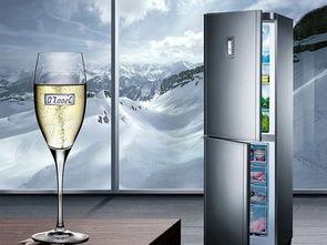 西门子KK19V016BW电冰箱使用说明书:[2]