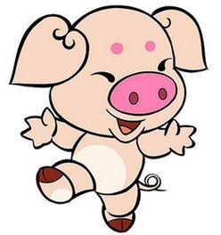 属猪什么时辰出生最好,属猪的时辰出生最好命